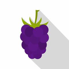 Fresh blackberry icon, flat style