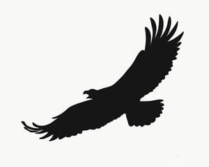 Black silhouette of a flying eagle