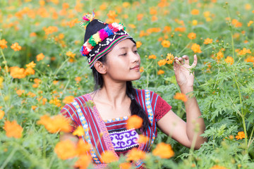 Asian woman in traditional costume for Karen sniffs a flower Cosmos orange on meadow