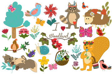 Set with forest animals and birds. Funny squirrel, raccoon, hedgehog, butterflies and plants. Hand-drawn Cartoon... Vector illustration