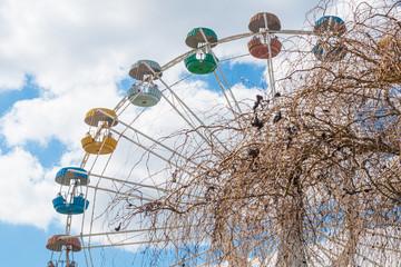 cabine colorate della ruota panoramica sullo sfondo di cielo blu