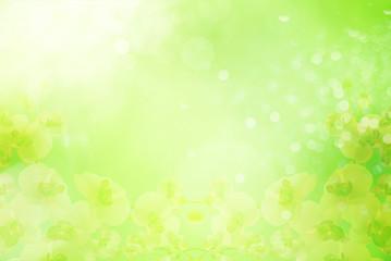 Natur -  Frühlingsfarben und Strukturen, Hintergrund