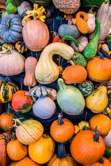 Pumpkin display for Halloween