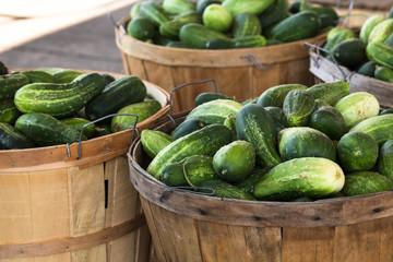 Bushels of Cucumbers at Farmers Market