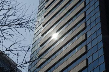 ビルを照らす太陽