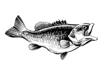 Fish with opened mouth