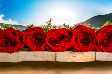 five red roses lie on a wooden table