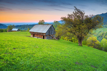 Summer alpine landscape near Brasov, Transylvania, Romania, Europe
