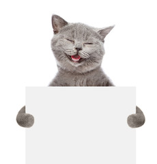 Smiling cat holding a white banner. isolated on white background