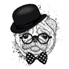 Lovely pug hat and with a tie. Funny dog. Puppy. Vector illustration for a postcard or a poster. Print on clothes.