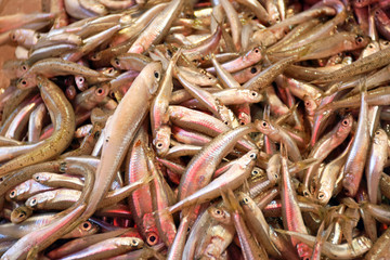Many tiny fish are on sale at a market stall in Crete (Greece)