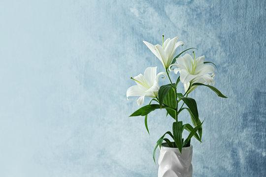Beautiful white lilies on light background