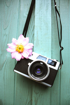 Film Camera and Flower