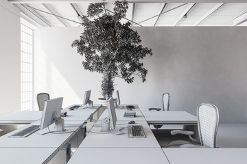 Bright office minimalist concept
