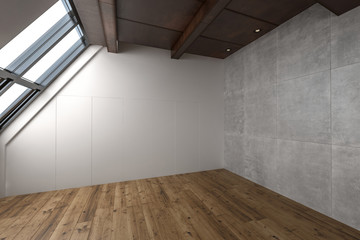 One large empty contemporary attic apartment