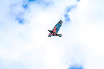 Kite flying against the sky
