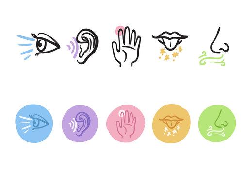Hand drawn icons representing the five senses