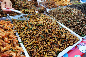 Fried insects street food in Thailand This is fried insect food is high in protein. And delicious, especially bamboo worms, which are expensive..