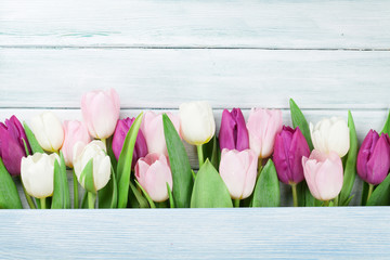Colorful tulips over wooden background