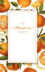 Mandarin vertical banner