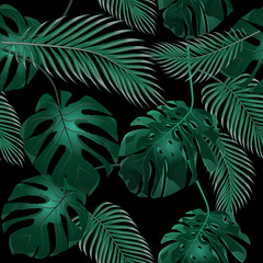 Tropical palm leaves. Jungle thickets. Seamless floral pattern. Isolated on a black background. illustration