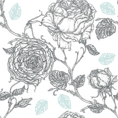 Peony or rose flower in victorian etching style.