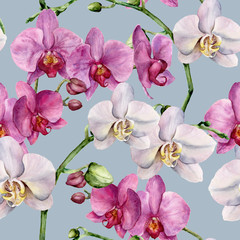 Watercolor pattern with white and pink orchids. Hand painted floral botanical ornament. For design, fabric or print.