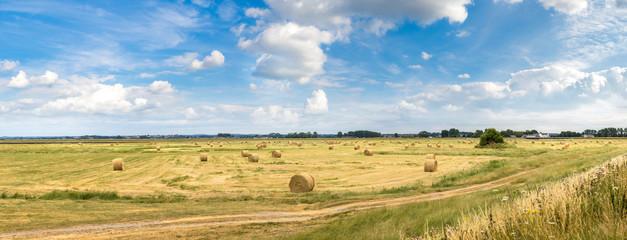 Hay bale field
