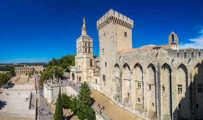 Wall Mural - Papal palace in Avignon
