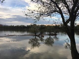 Lago de los Lirios en Cuautitlán Izcalli