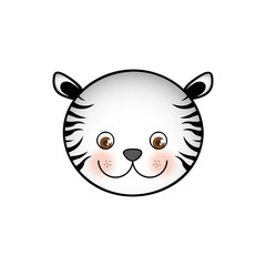 colorful picture face cute tiger animal vector illustration