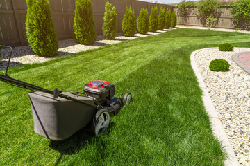 Lawn mower in the garden on green grass