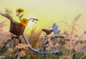 Foto op Plexiglas Fiets Sunflower in bicycle basket in a beautiful meadow. Teddy bears sitting on a bicycle with sunset background. Bicycle vintage customization. sunset vibrant orange
