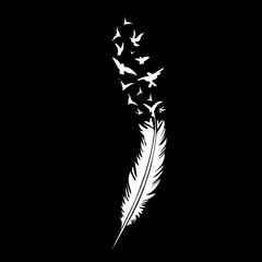 Black-and-white feather on black backround, vector illustration