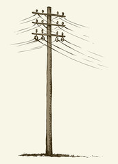 Old wooden power pole