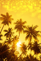 Palm trees silhouettes at sunset with party glitter bokeh overlay effect