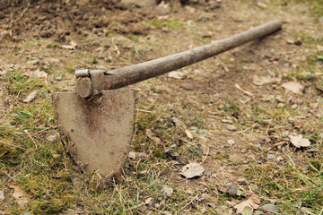 hoe placed on the ground in autumn