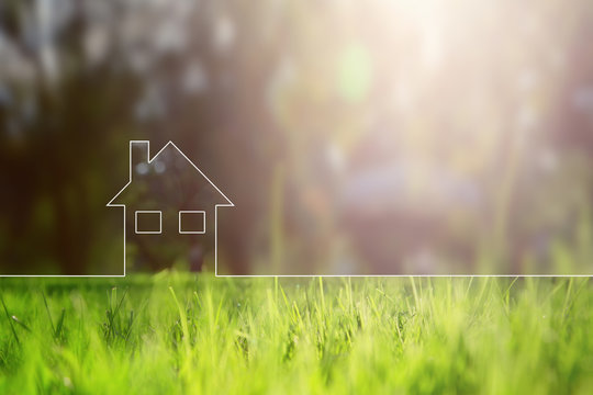 Conceptual eco home healthy living copy space background with blurred sunny meadow texture.