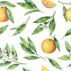 Watercolor fruit orange seamless pattern of flowers and leaves isolated on white background.
