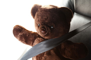 The safety belt in action of fastening with bear doll body represent the car safety part concept related idea.