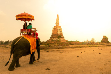 Elephant tour in Ayutthaya, Thailand.