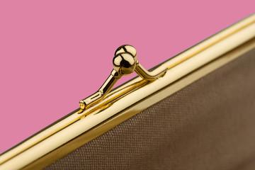 detail of female golden wallet