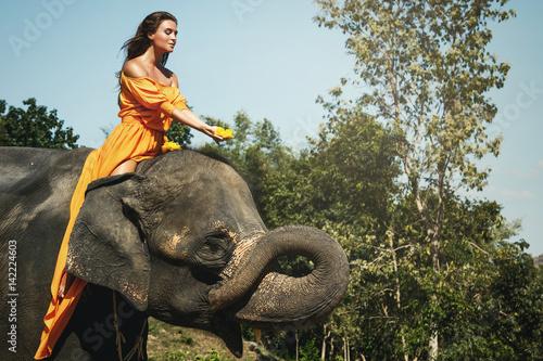 Woman in beautiful orange dress and elephant