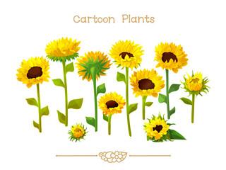 Plantae series cartoon plants: Sunflower set