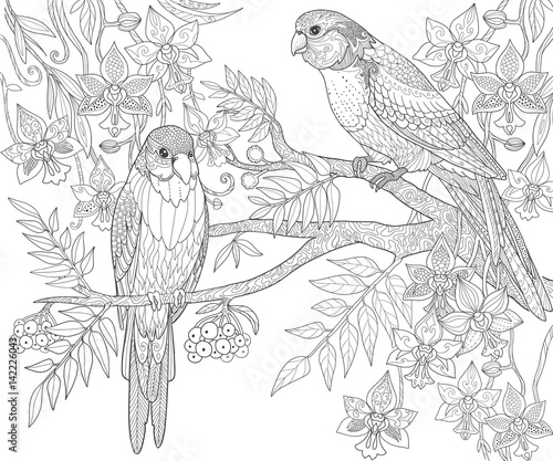 quot parrots sit on a branch in the jungle coloring