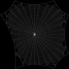 Spiderweb. Isolated on black background. Sketch illustration.
