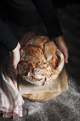 Hands woman taking homemade bread with dark background