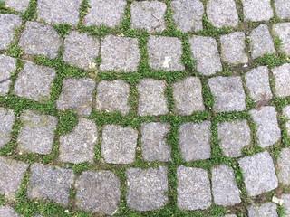 cobblestone pavement as a background