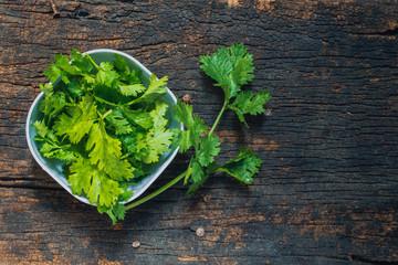 Coriander leaves, fresh green cilantro on wooden background, Food herbal aroma ingredient on dark wood.