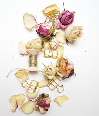 Blossom roses on the white background, top view, Flat lay.